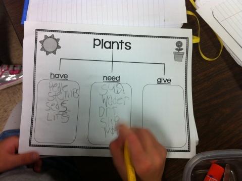 Plant Chart 1