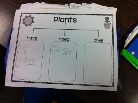 Plant Chart 2